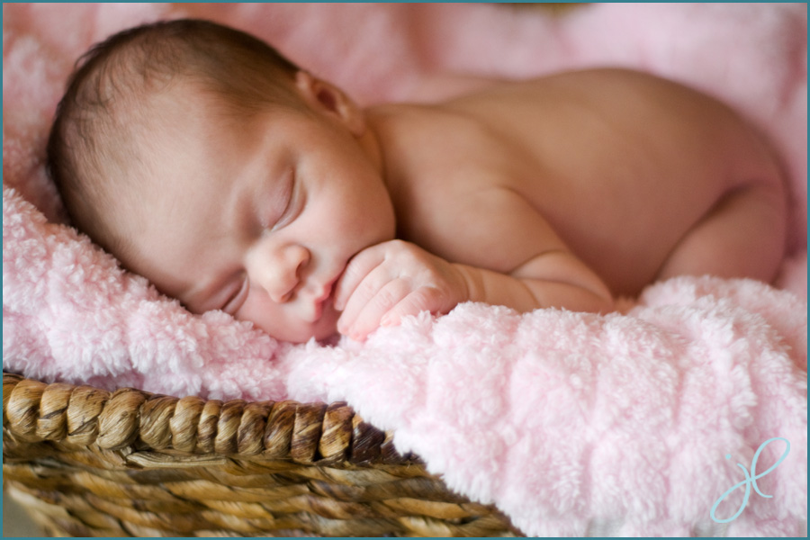 newborn photography Raleigh